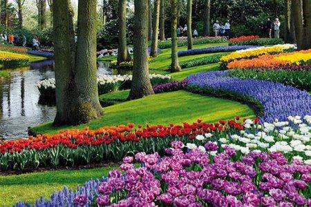 Нидерланды: 7 основных достопримечательностей Нидерландов