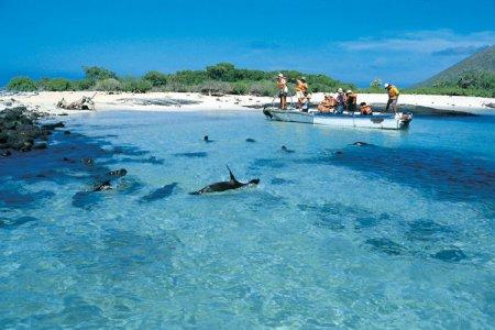 Галапагосские острова: 7 достопримечательностей Галапагосских островов