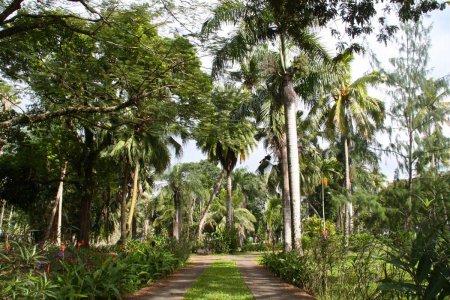 Фиджи: 7 основных достопримечательностей Фиджи